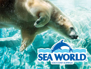 The Gold Coast Holiday Park is closest to Sea World